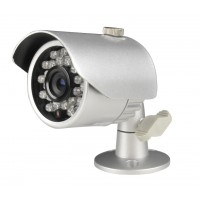 "1/3"" Sony color CCD 420TVL"